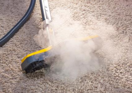 Carpet Cleaning in Virginia